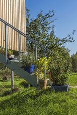 Treppenaufgang zu Holzhaus