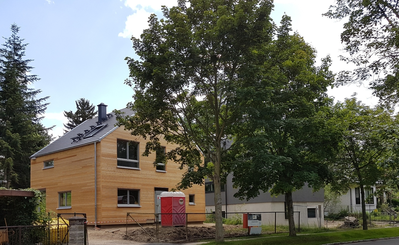 Haus beim Bau, großer Baum im Garten, Blick von Straße